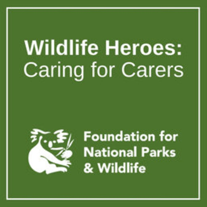 Wildlife Heroes: Caring for Carers | Climate Change - the grief we feel